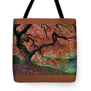 Under Fall's Cover Tote Bag