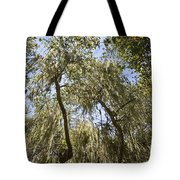 Under The Canopy - The Magical And Mysterious Trees Of The Los Osos Oak Reserve Tote Bag