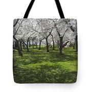 Under The Cherry Blossoms - Washington Dc. Tote Bag by Mike McGlothlen