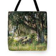 Under The Live Oak Tree Tote Bag