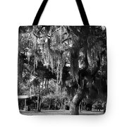 Under The Oaks Tote Bag