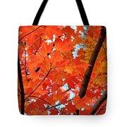 Under The Orange Maple Tree Tote Bag by Rona Black