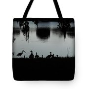 Under The Shadow Of The Day  Tote Bag