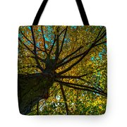 Under The Tree S Skirt Tote Bag