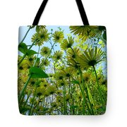 Under The Umbrellas Tote Bag