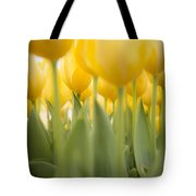 Under Yellow Tulips - 8x10 Format Tote Bag