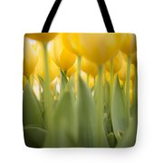Under Yellow Tulips Tote Bag