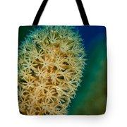 Underwater Gorgonian Tote Bag