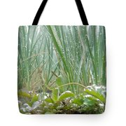 Underwater Shot Of Submerged Grass And Plants Tote Bag