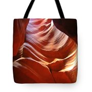 Undulating Pelvis Tote Bag