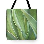 Unfolding Tulip Leaves Tote Bag