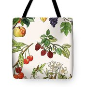 Unidentified Montage Of Fruit Tote Bag