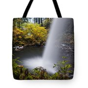 Unique View Of Ponytail Falls Tote Bag