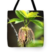 Unknown Tree Flower Tote Bag