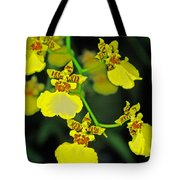unnamed hybrid Orchid  Tote Bag