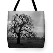 Winters Gloom Tote Bag