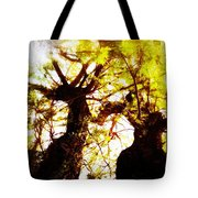 Untitled-twin Trees Tote Bag