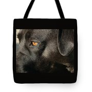 Up Close And Personal Tote Bag by Kathy K McClellan