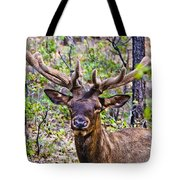 Up Close And Personal With An Elk Tote Bag