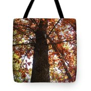 Up Fall Tote Bag
