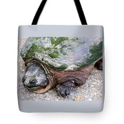 Up From The Pond Tote Bag