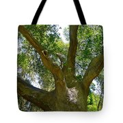 Up In The Trees Tote Bag