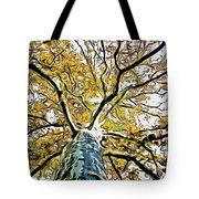 Up Into The Tree Tote Bag