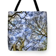 Up Into The Trees Tote Bag