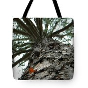Up Pine Tote Bag