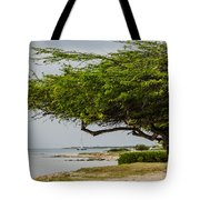 Up The Coast Tote Bag