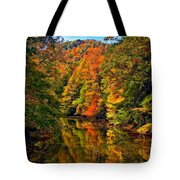 Up The Lazy River Painted Tote Bag