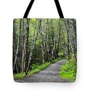 Up The Trail Tote Bag