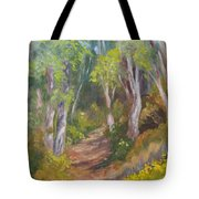 Uphill Path-batiquitos Tote Bag