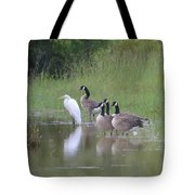 Upon The Misty Waters Tote Bag