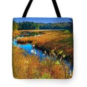 Upper Cary Lake In The Adirondacks Tote Bag
