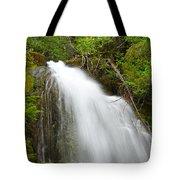 Upper Cougar Falls Tote Bag