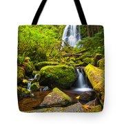Upper Kentucky Falls - Autumn Tote Bag