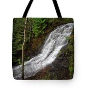 Upper Little Falls Tote Bag