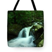 Upper Lynn Camp Prong Cascades Tote Bag