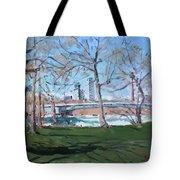 Upper Rapids Of Niagara Falls Ny Tote Bag