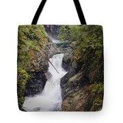 Upper Twin Falls Tote Bag
