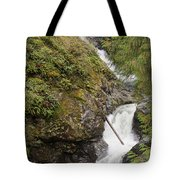 Upper Twin Falls Steps Tote Bag