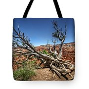 Uprooted - Bryce Canyon Tote Bag