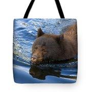 Ursa Mirrored Tote Bag
