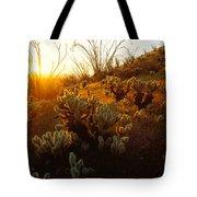 Usa, Arizona, Sonoran Desert, Ocotillo Tote Bag