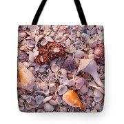Usa, Florida, Sanibel Island, Gulf Tote Bag