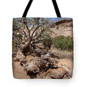 Utah Tree Tote Bag