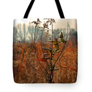 Autumn Grass6277 Tote Bag