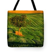 Val D'orcia Tree Tote Bag