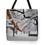Valley Forge Winter 9817 Tote Bag